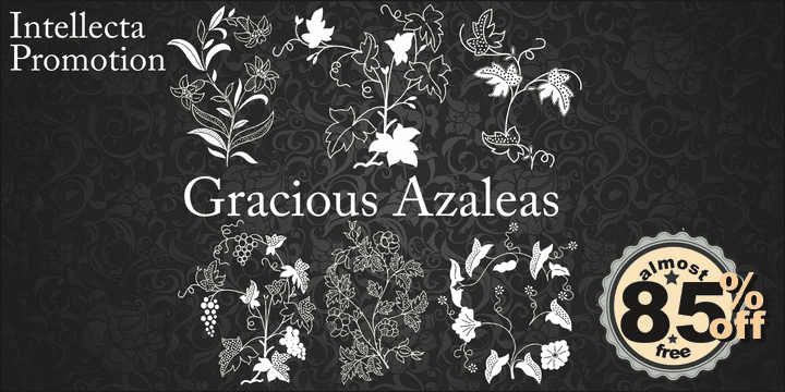 117284 - Gracious Azaleas (10% discount, 11,69€)