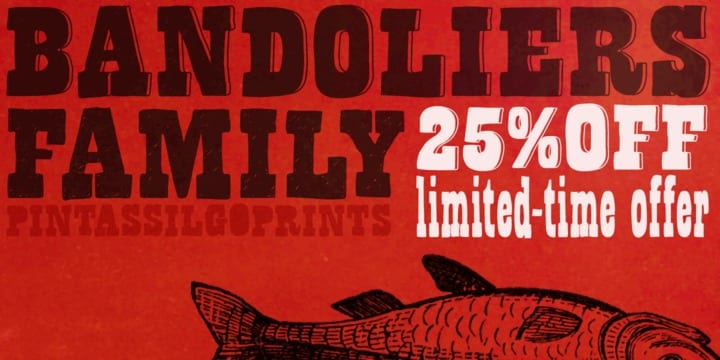 94623 - Bandoliers (25% discount, from 11,99€)