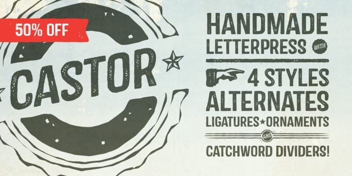 132522 - Castor (50% discount, from 0,00 €)