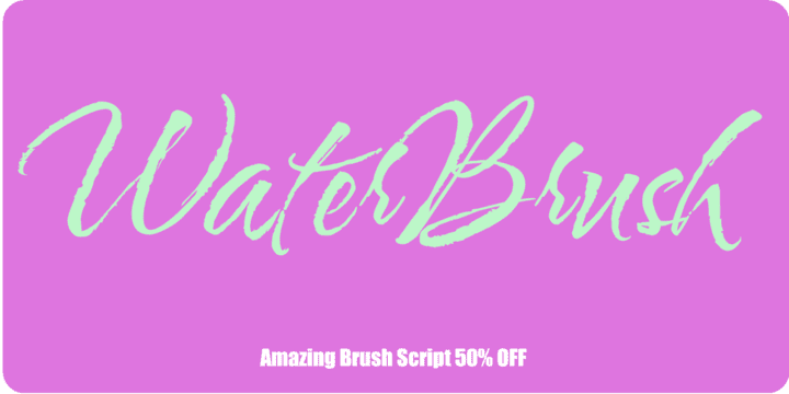 133932 - Water Brush (50% discount, 9,00 €)