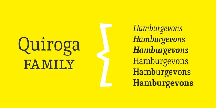 141519 - Quiroga Serif Std (80% discount, family 16,80€)