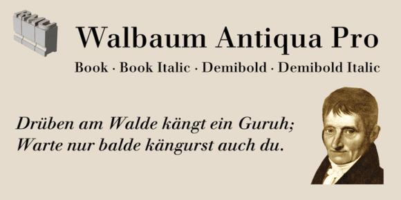 0d68bb3656003265b794a1955fbc9ddd 580x290 - Walbaum Antiqua Pro (20% discount, from 27,19€)