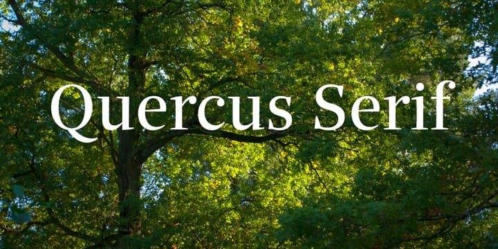 3d7918378c2b005ce0dd15602bf38884 - Quercus Serif (30% discount, from 39,89€)