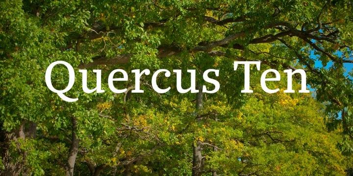 7e40e340cbada518314037ecdc9d5641 - Quercus 10 (30% discount, from 39,89€)