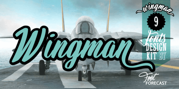 f00b81414d54431f10bce7cd9fff4d3b 580x290 - Wingman (50% discount, family 34€)