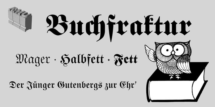 a3e050d789ce0179031b2303c1d576e9 - Buchfraktur (20% discount, from 15,99€)