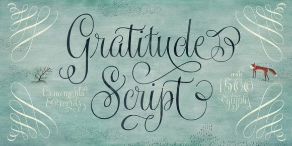 ee2485e82a78738685152997ab1f5f49 580x290 - Gratitude Script (35% discount, from 36,39€)