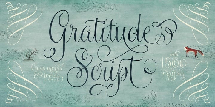 ee2485e82a78738685152997ab1f5f49 - Gratitude Script (35% discount, from 36,39€)
