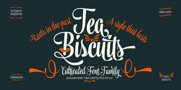 e2102c805c17d6f5d280848fcba3472f 580x290 - Tea Biscuit (15% discount, from 27,19€)