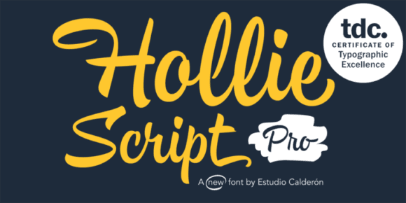 28edb7d15e37c2e8950df616de3ca889 580x290 - Hollie Script Pro (20% discount, from 12,79€)