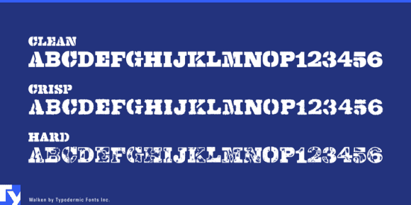 Any OpenType Features