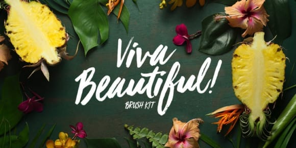 e95b0fc57270ef1216e8580d8d66067b 580x290 - Viva Beautiful (70% discount, family from 11,10€)