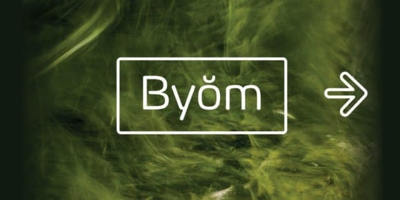 e582b04419122273ad69edf25efa28b2 580x290 - Byŏm (40% discount, from 4,79€)