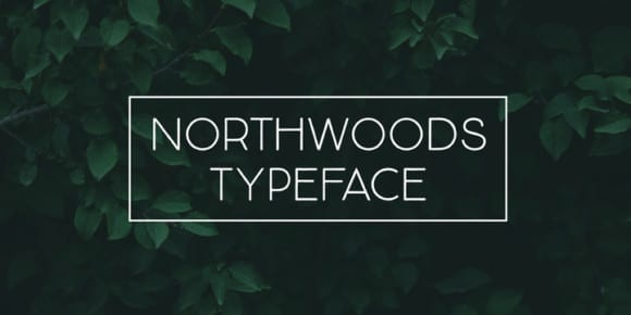 682b18ac0db8929f257f85318c0d2eeb 580x290 - Northwoods (30% discount, from 10,49€)