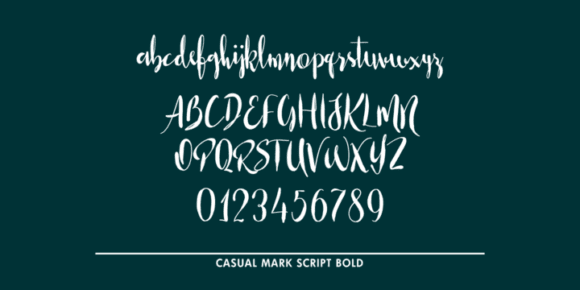 997d541df2dfc100fd1c96604caf56e9 - Casual Mark Script (50% discount,from 8€)