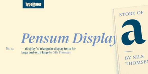 acc476daee9897cc0111ecc01bbb44ca 580x290 - Pensum Display (50% discount, from 49,00€)