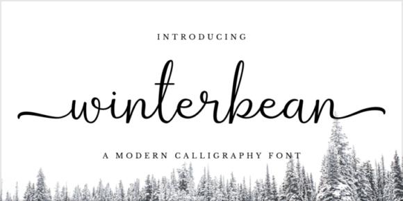 4e0010a49e526912827ef3eba85c3e74 580x290 - Winterbean (FREE fonts)