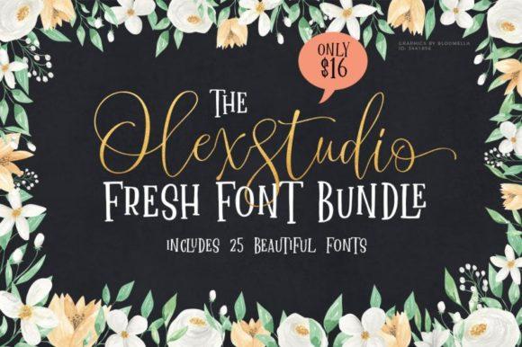 78fb249909f2db424bba6f9477fe15d7 580x386 - The Olex Studio Fresh Font Bun